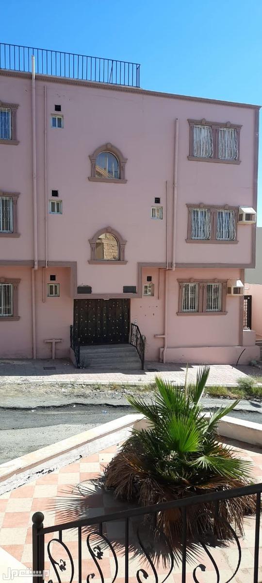 للايجار السنوي شقة جديدة بالهدا بسعر مغري