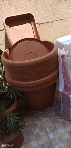 احواض ومراكن زراعة للبيع جديدة