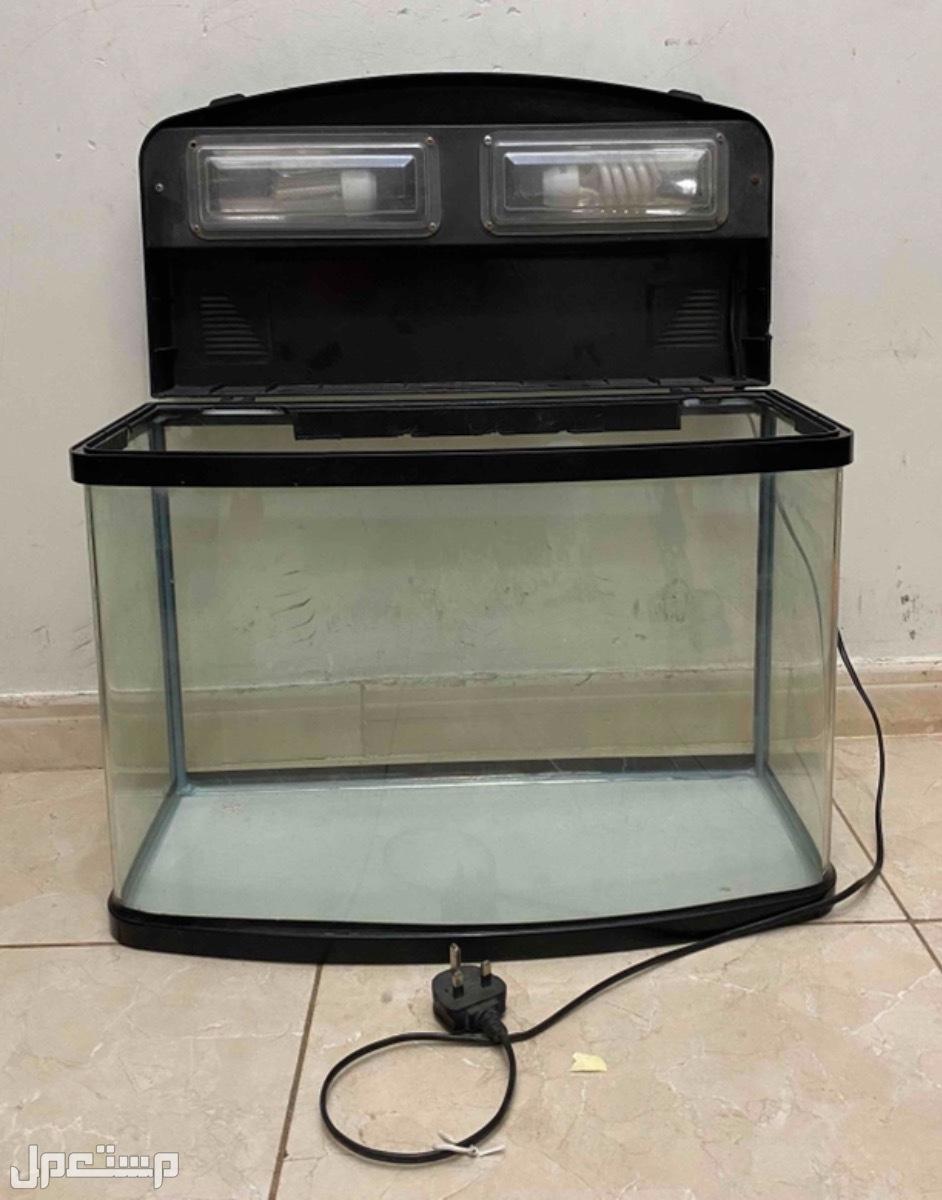 حوض أسماك الزينة مستعمل