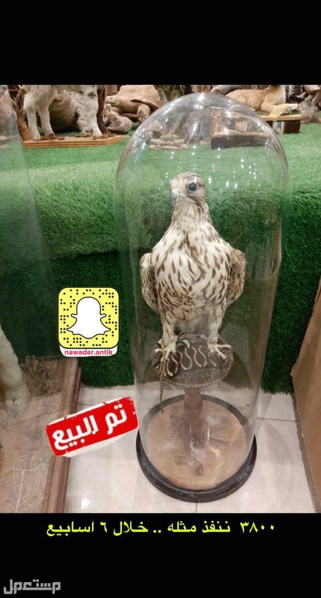 الرياض حي الملك فهد / طريق الامام