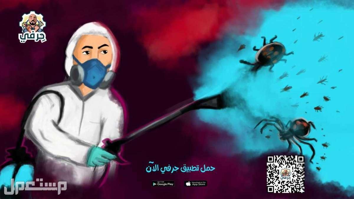 حل مشاكل الحشرات في الصيف بالسعودية