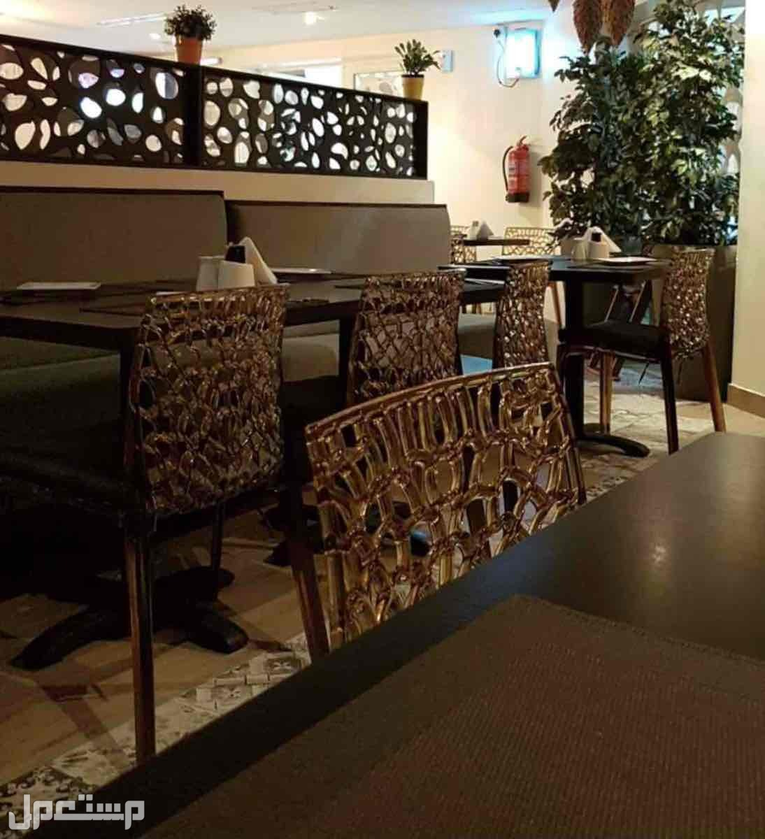 طاولات طعام خشب +  كراسي  + كنبات جلوس
