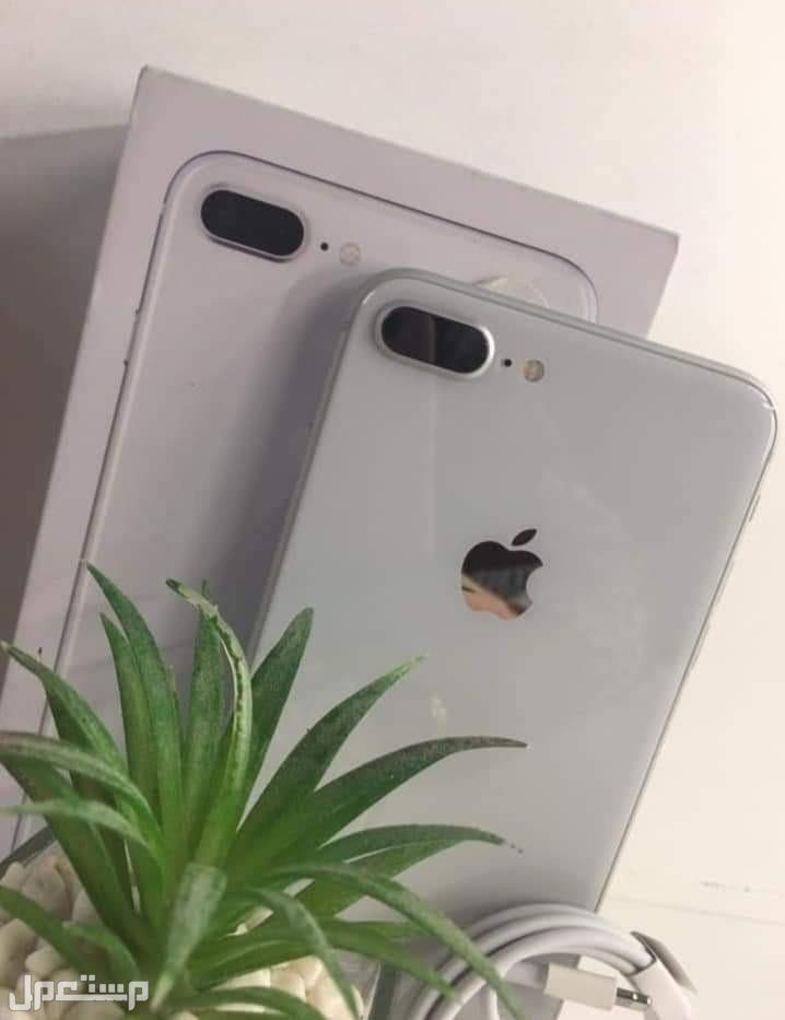 يلا نصيف ونمسك جهاز جديد 🤩🤩🤩وشيك لا 🙄كمان باقل سعر وأقل سعر شحن ايفون 8