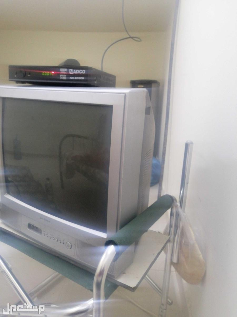 تلفزيون كبيرتوشيبا