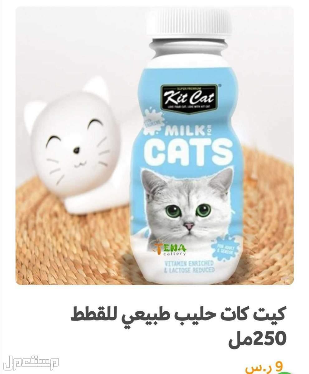 اكل قطط رويال و مستلزمات قطط