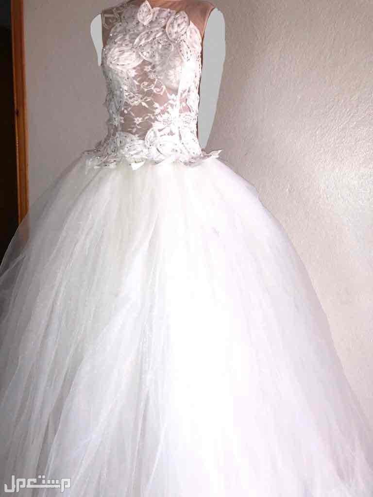 فستان زفاف الفستان اوف وايت