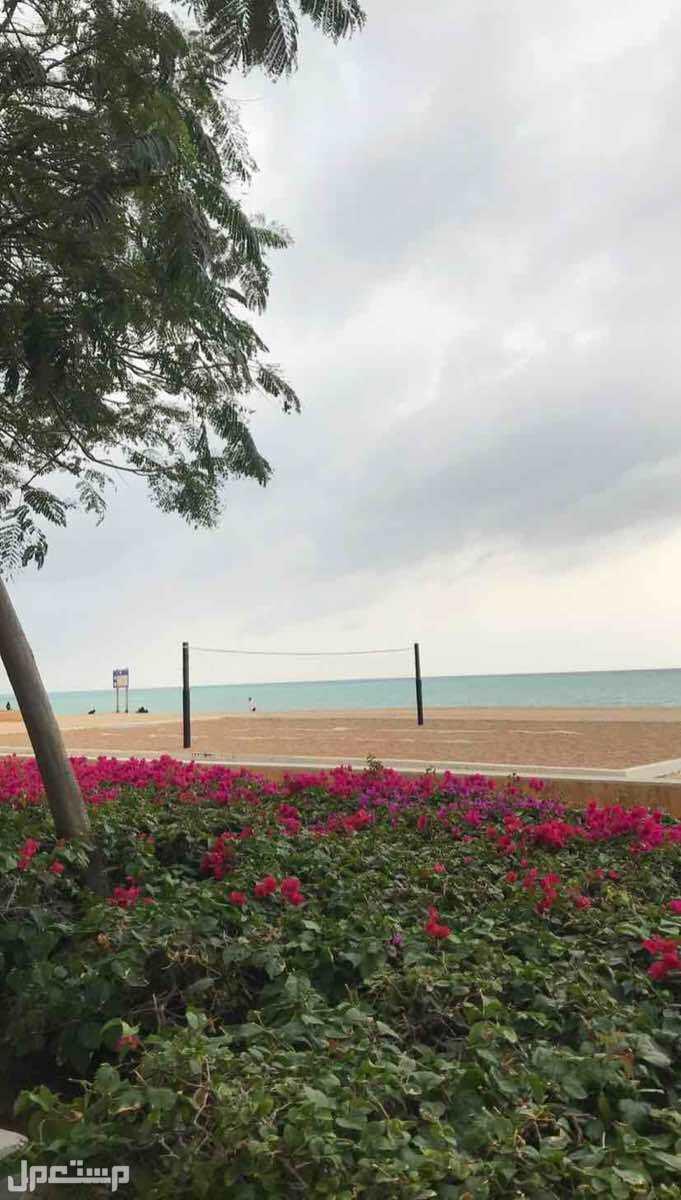 شقق للايجار مطله على البحر مدينة الملك عبدالله الاقتصادية.