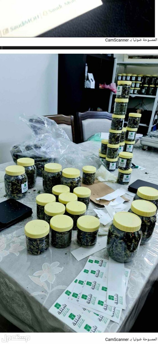 الشاي الازرق المستورد من تايلندا