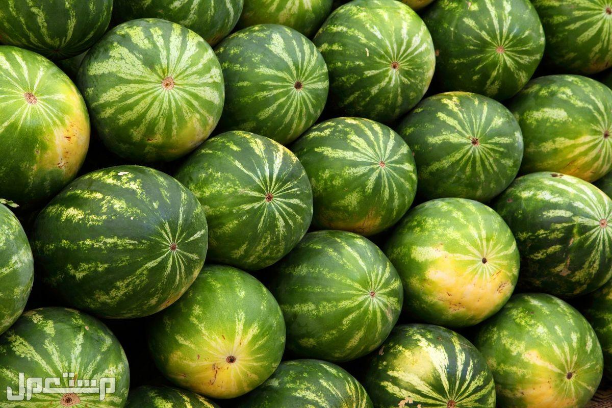 مطلوب كميات من البطيخ ، الجح ، الحبحب ، #بطيخ ، #جح ، #حبحب