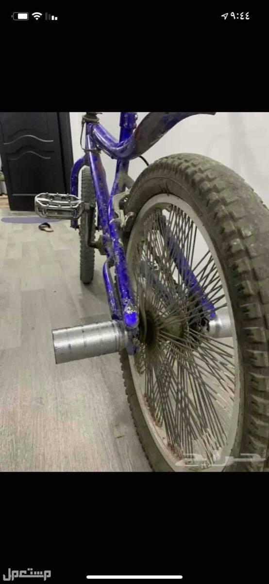 دراجة كوبرا. مقاس24