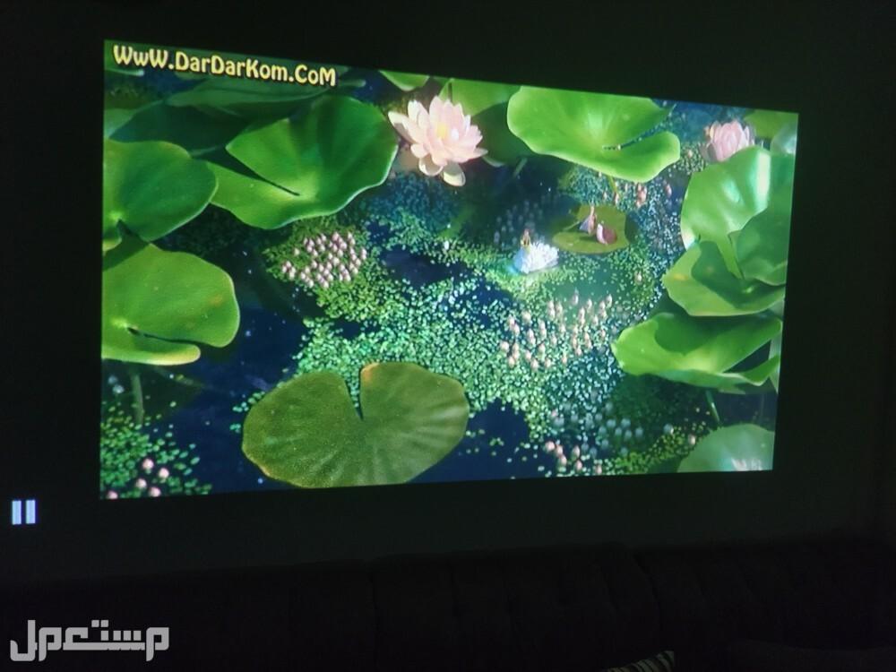 lg projector بروجكتر ال جي