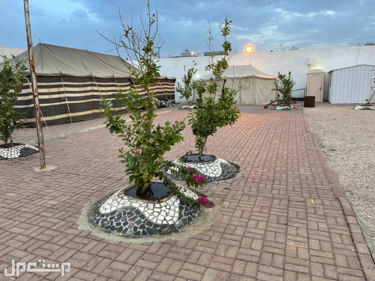 استراحة مخيمات قسمين للبيع