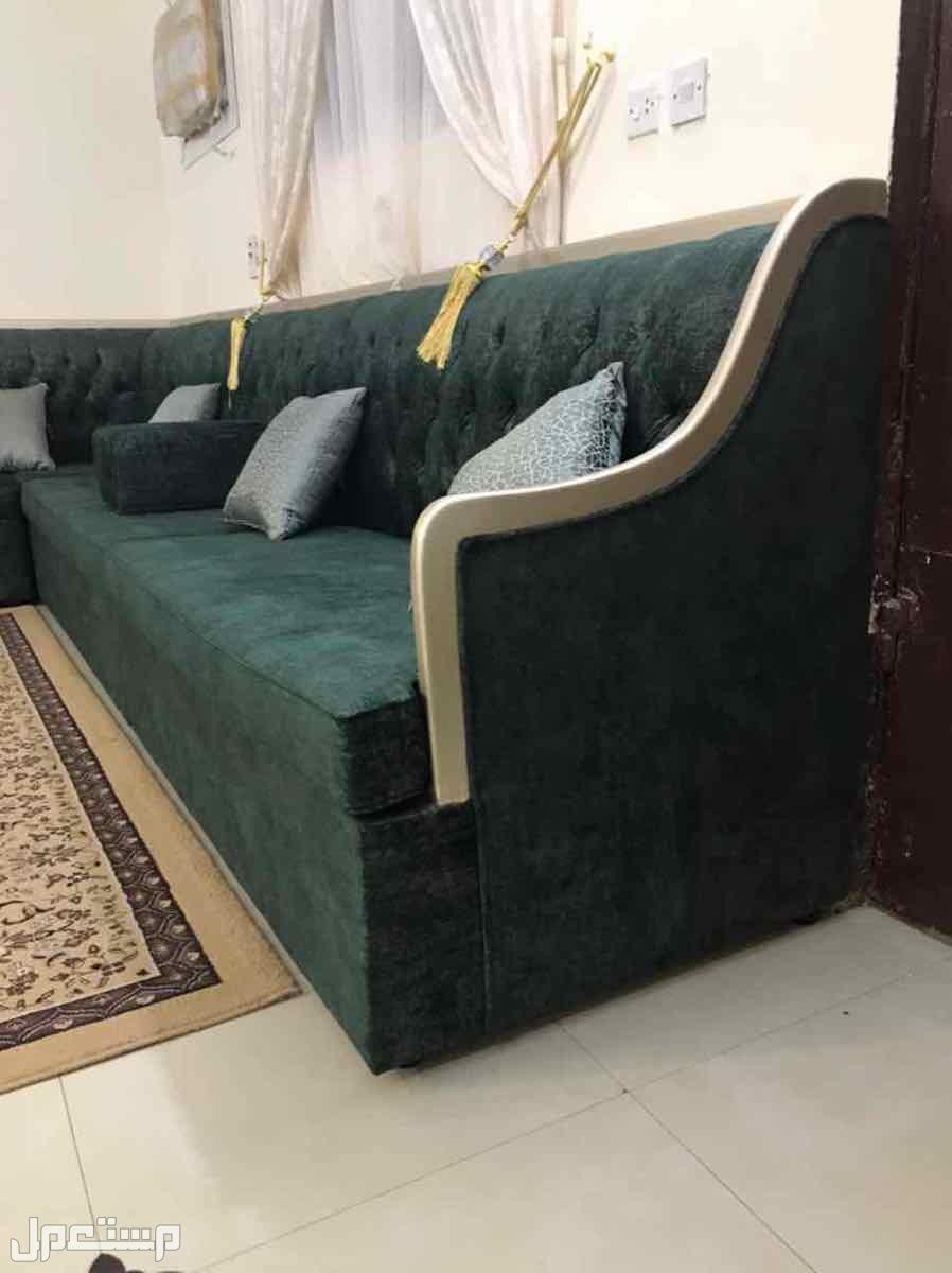 الرياض / الشفا