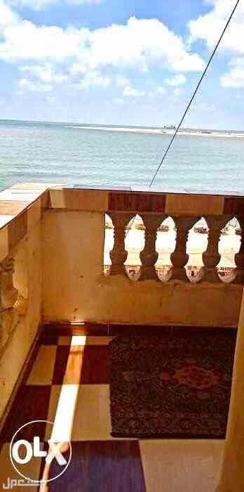 شقة علي البحر مباشر ابو قير من البلكونة للبحر