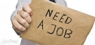 مقيم من مواليد المدينة المنورة  يرغب بعمل
