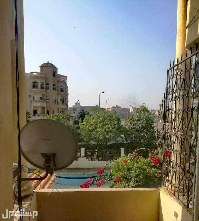 الشيخ زايد، الحي السابع، شارع المستقبل